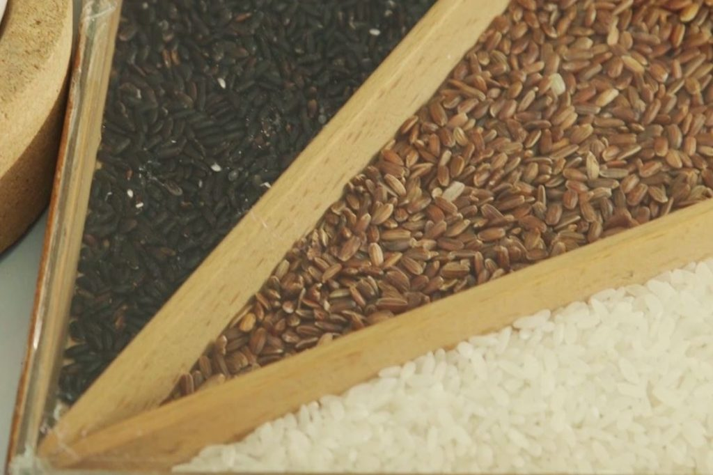 varietà riso